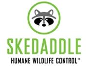 Skedaddle Humane Wildlife Control Hamilton