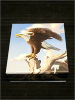 2014 $100 RCM The Majestic Bald Eagle in 99.99% Fine Silver!