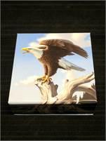2014 $100 RCM The Majestic Bald Eagle in 99.99% Fine Silver!