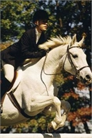 Beautiful Horse-Sample Listing