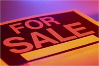 Land for Sale - Sample Ad